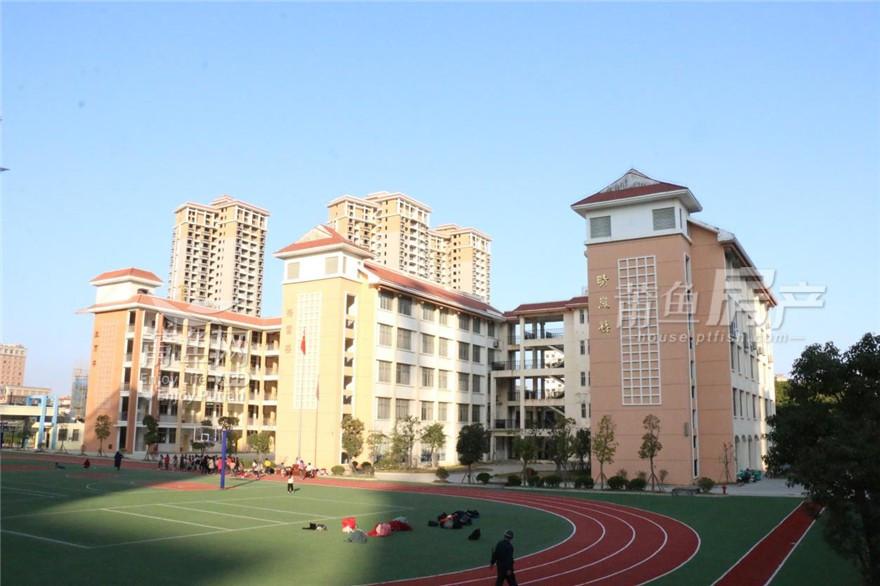 荔城区第八实验小学