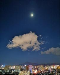 手机拍客  城里的月光