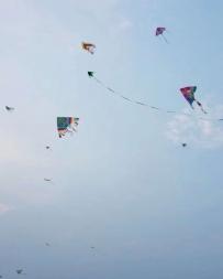 放飞的不止是风筝。